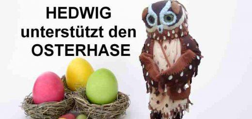 Hedwig unterstützt Osterhase